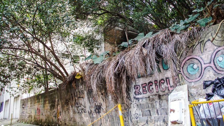 <p>Uma das nascentes do Rio Saracura fica num beco no fim da Rua Dr. Seng, na Bela Vista</p>