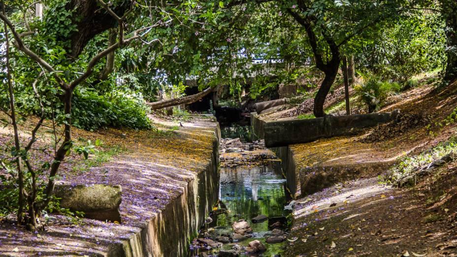 <p>Um dos raros rios destamponados de São Paulo, o Corujas corre a céu aberto por toda a extensão da Praça Dolores Ibarruri e por mais algumas centenas de metros no Parque Linear das Corujas. Em suas margens, muito verde e dezenas de pássaros</p>