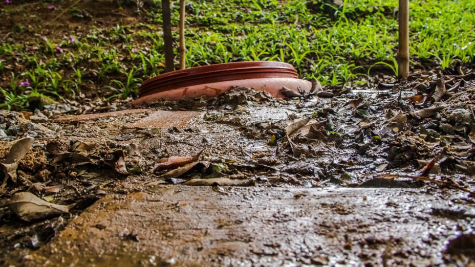 <p>Uma das nascentes do Riacho da Água Preta, na Praça Homero Silva</p>