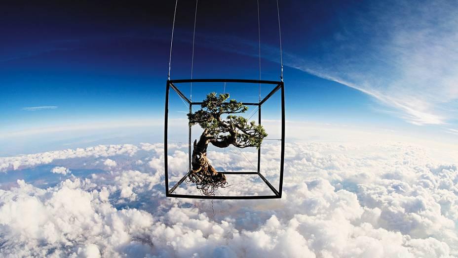 <p>O artista japonês Azuma Makoto colocou um bonsai e diversas outras plantas em um balão para produzir fotos como estas, para um projeto denominado Exobiotanica Above the clouds</p>