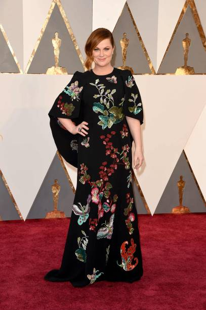 Amy Poehler no Oscar 2016, vestindo Andrew Gn