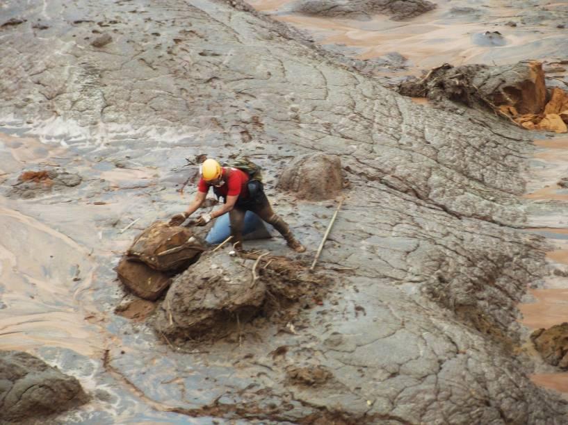 Bombeiros tentam abrir caminho em meio à lama que cobriu o distrito de Bento Rodrigues, em Mariana (MG)