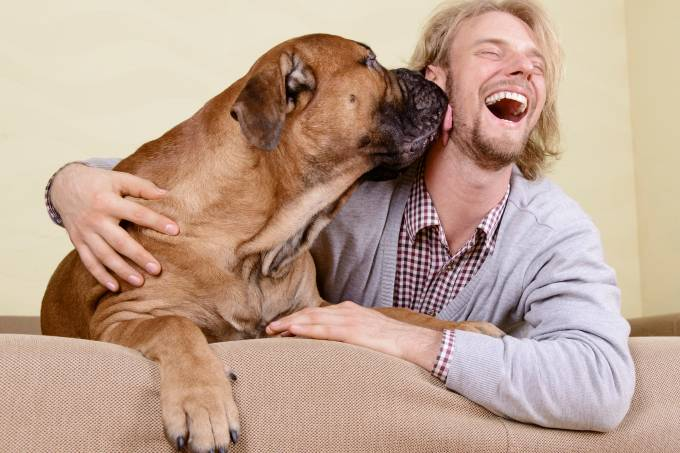 alx_cachorro-lambendo-20140107-01_original.jpeg