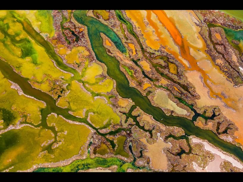 <p>A foto do espanhol Pere Soler foi uma das vencedoras com o retrato a mistura de algas, depósitos de sal e sedimentos marrons e alaranjados no Parque Natural da Baía de Cádiz. </p>