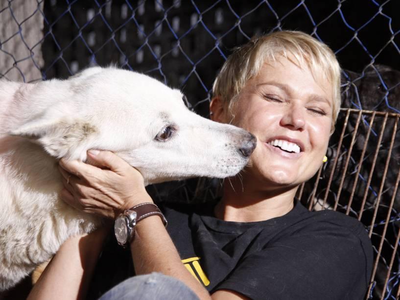 Xuxa durante a campanha mundial Adotar é tudo de Bom, em um abrigo de animais abandonados, na cidade de Jacarepaguá - 2011