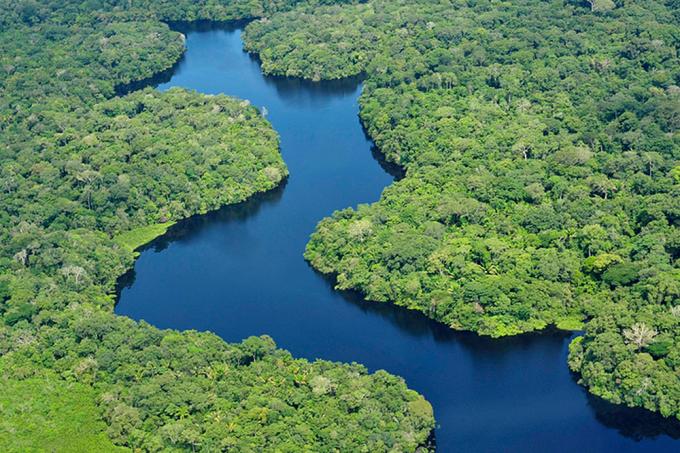 alx_floresta-amazonica-20160505-08_original.png