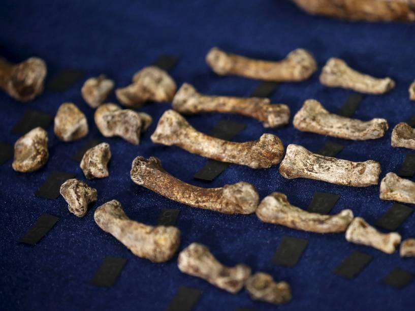 <p>Os fragmentos fósseis do Homo naledi podem modificar a visão de como se deu a evolução humana</p>