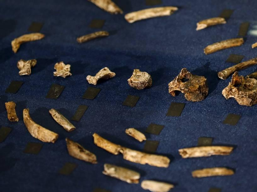 <p>Os fragmentos fósseis do Homo naledi, apresentados pelos cientistas nessa quinta-feira (10/9)</p>
