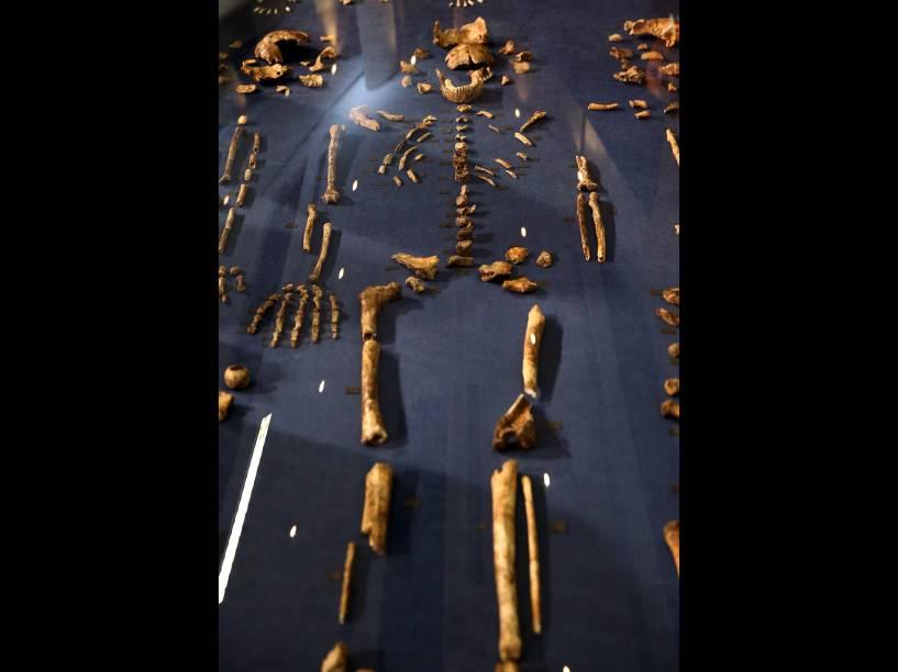 <p>Os ossos do Homo naledi ficarão acessíveis em uma sala da Universidade de Witwatersrand, em Johannesburgo, África do Sul</p>