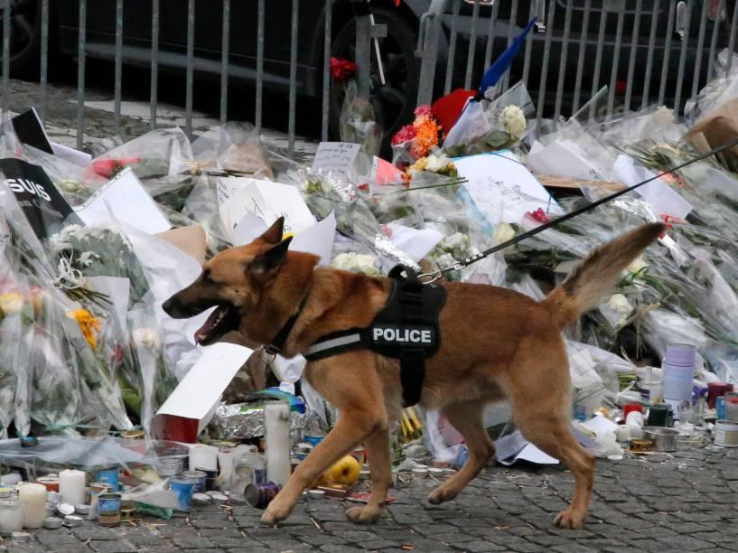 Cachorros da polícia de elite reforçam a segurança fora do mercado kosher onde quatro reféns foram mortos e, pouco antes da visita do primeiro-ministro israelense Benjamin Netanyahu em Paris , na França