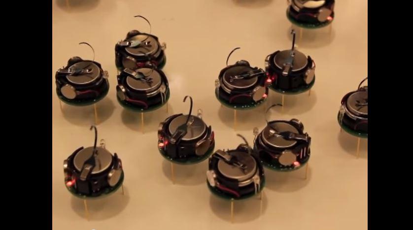 <p>Quinto lugar: Eles não são animais de verdade, mas se parecem com insetos. Os Kilobots, robôs desenvolvidos na Universidade Harvard, conseguem seguir um plano e se organizar em diferentes formas</p>