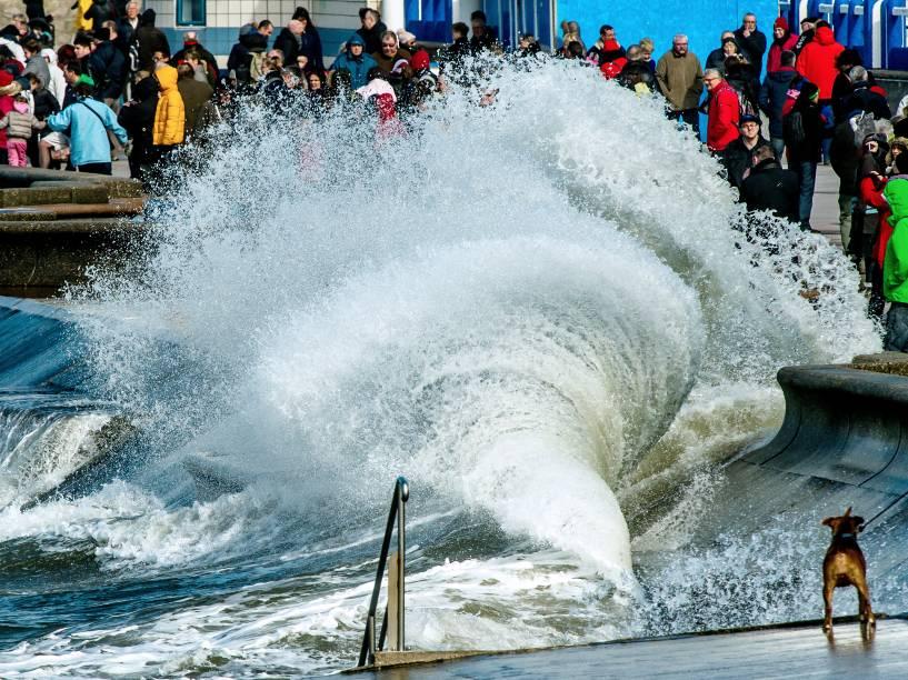 Com a maré do século, amplitude das marés (máxima diferença entre maré baixa e alta) ultrapassa os 14 metros