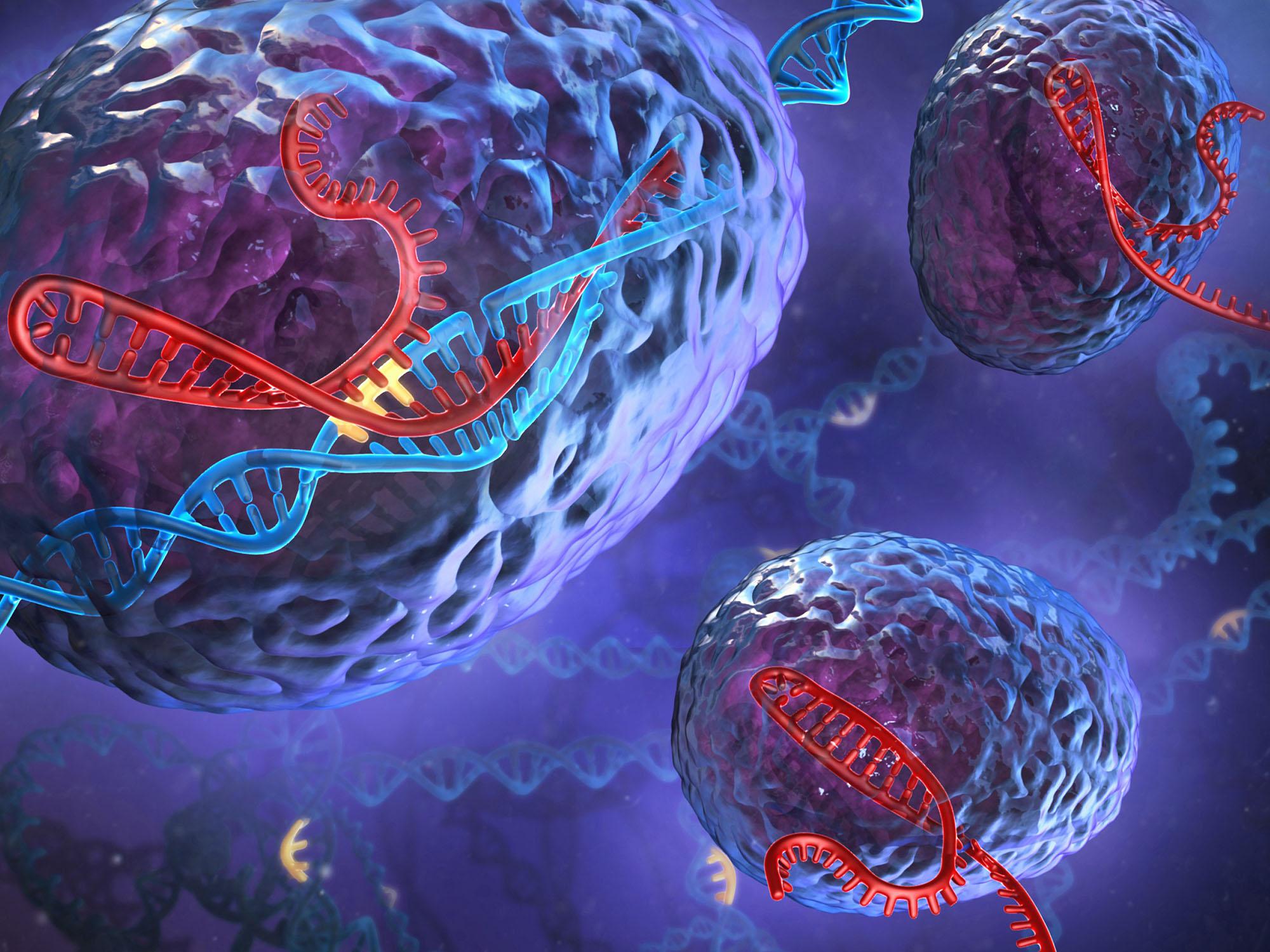 Predispozitia genetica in cancerul de san si cancerul ovarian | p5net.ro