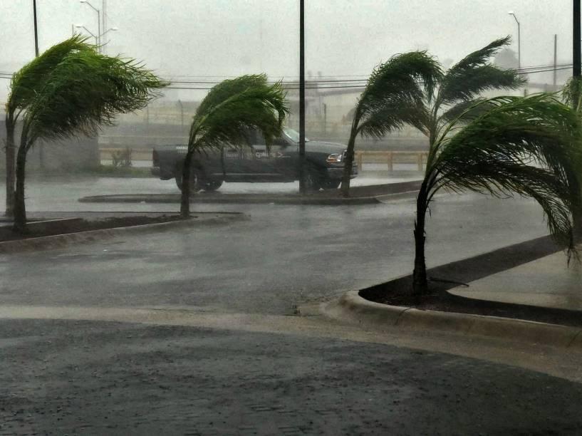 Vista de uma rua em Manzanillo, estado de Colima, no México durante a passagem do furacão Patricia - 23/10/2015