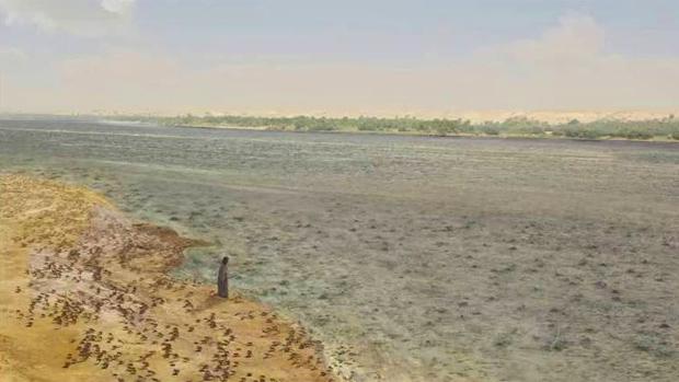<p>Rãs brotam do Nilo na segunda praga do Egito, mostrada em Os Dez Mandamentos</p>