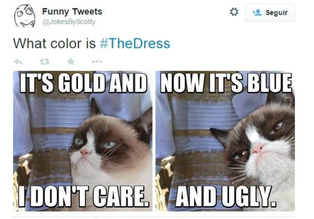 """<p>""""É dourado e eu não ligo / Agora é azul e feio"""" </p>"""