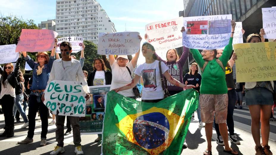 São Paulo - Manifestantes fazem protesto na Paulista, neste sábado (22)