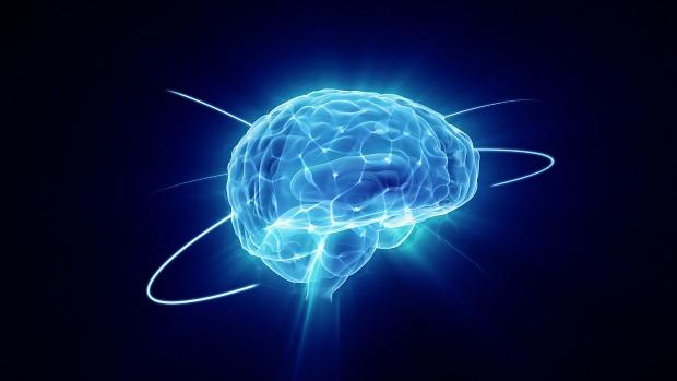 cerebro-2013-06-12-original.jpeg