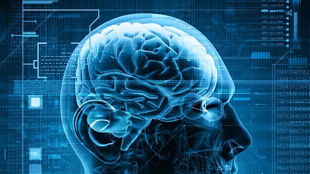 cerebro-20130508-original.jpeg