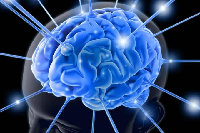 cerebro-inteligencia-20120801-01-original.jpeg
