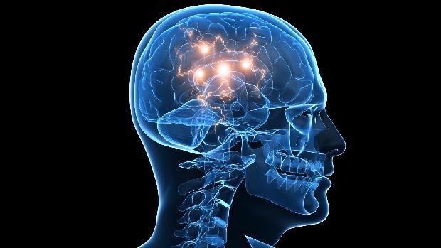 cerebro-memoria-cognicao-20110727-original.jpeg