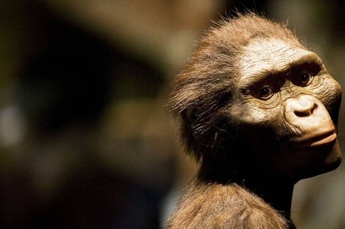 ciencia-australopithecus-afarensis-20070828-02-original.jpeg