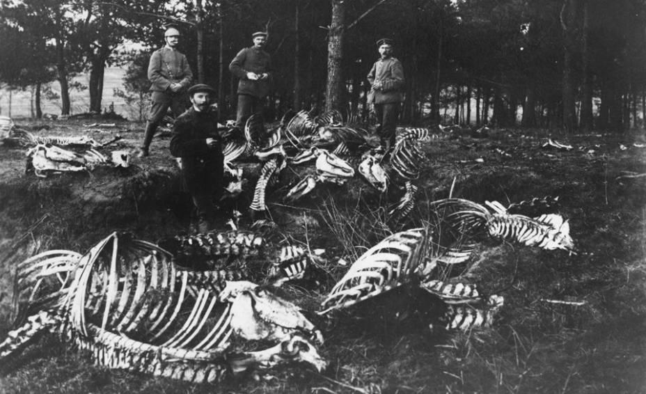 Soldados alemães ao lado de esqueletos de cavalos na I Guerra Mundial, na Polônia