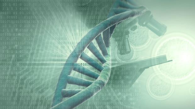dna-genoma-helice-620-original.jpeg
