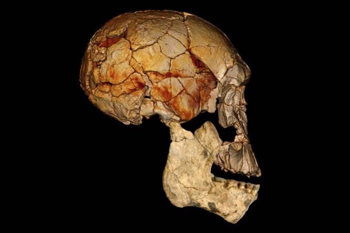 escavacao-fossil-quenia-20120711-01-original.jpeg