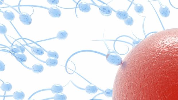 espermatozoide-infetilidade-mutacao-20110721-original.jpeg