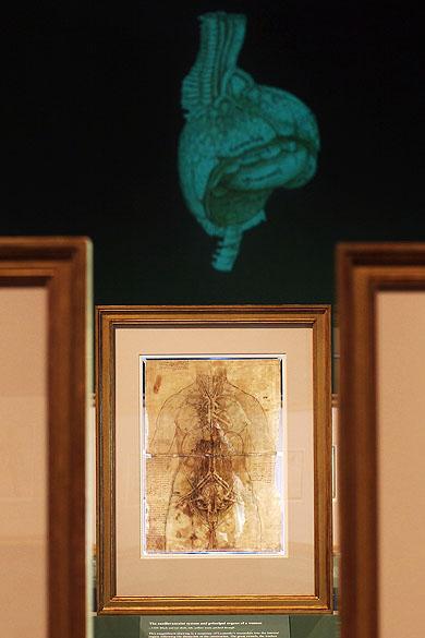 """<p>Exposição entitulada """"Anatomist: Inside His Mind, Inside The Body"""" reúne estudos do corpo-humano realizados por Leonardo Da Vinci</p>"""