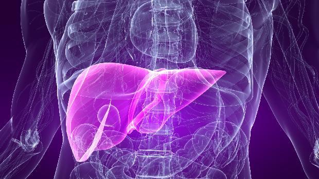 figado-hepatite-casos-sao-paulo-20110517-original.jpeg