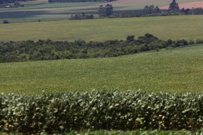 fronteira-brasil-paraguai-20120205-40-original.jpeg