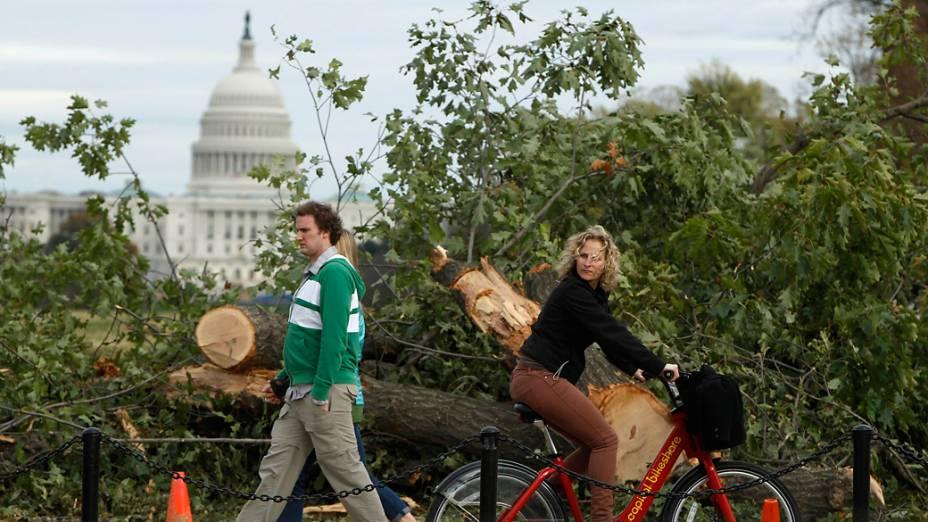 Pedestres passam diante de árvores derrubadas pela passagem da tempestade Sandy em Washington