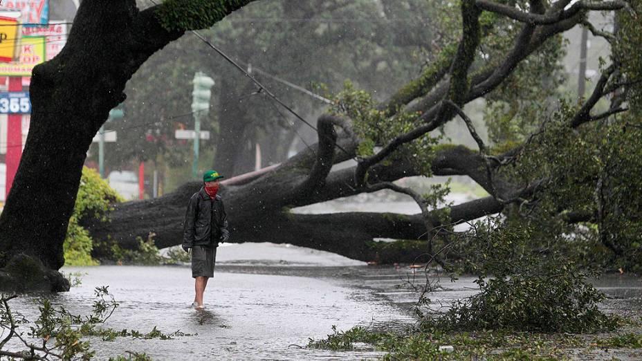 Homem passa em frente a árvores caidas em uma avenida em Louisiana