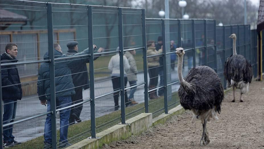 A propriedade de Mezhyhirya tem campo de golfe e zoológico particular