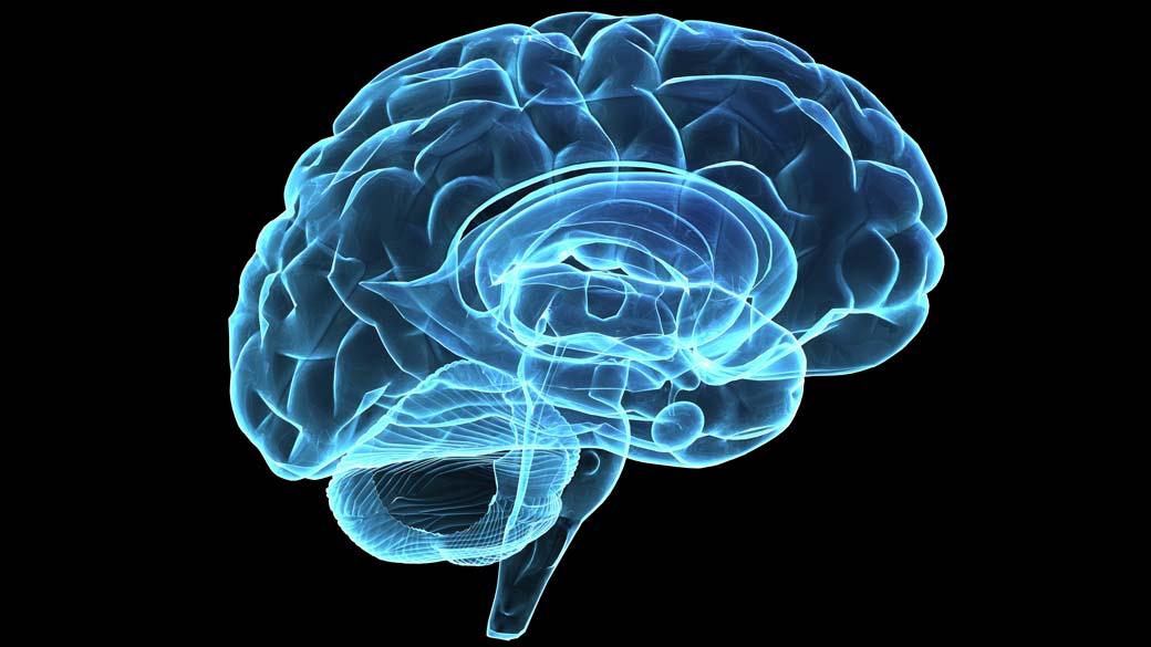 Dopamina pode determinar grau de esforço no trabalho | VEJA