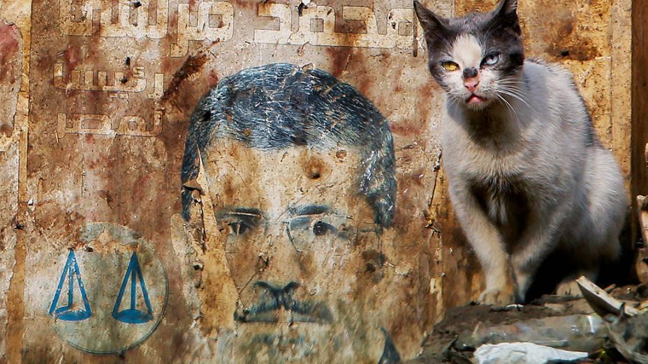 Um gato é fotografado perto de um cartaz da campanha presidencial do presidente deposto Mohammed Morsi no Cairo, Egito, nesta quarta-feira (8). O julgamento ex-presidente do Egito Mohamed Morsi foi adiado pela segunda vez consecutiva e será realizado no próximo dia 1º de fevereiro