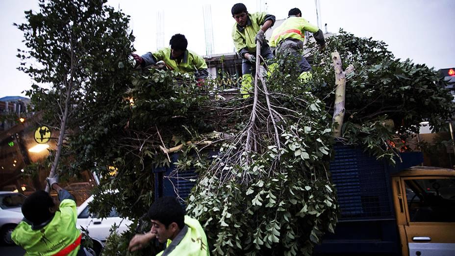 Funcionários de Teerã recolhem as árvores que caíram durante a tempestade de areia que atingiu a capital do Irã