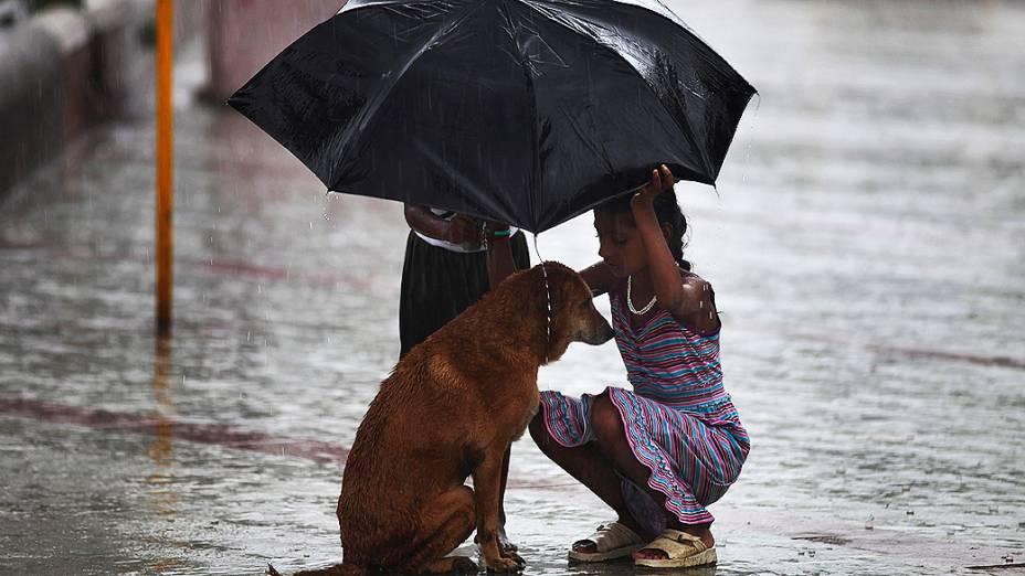 Menina usa seu guarda-chuva para proteger um cão durante o período de monções em Mumbai, Índia