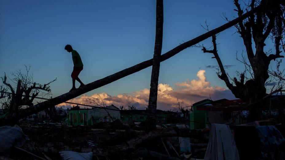 Menino caminha sobre o tronco de uma palmeira caída em Tanauan, Leyte, nas Filipinas. O supertufão Haiyan, que atravessou as Filipinas, deixou milhares de mortos e desabrigados