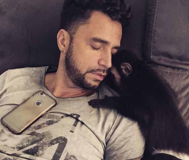 Latino e seu macaco, Twelves