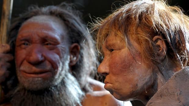 neandertal-original.jpeg