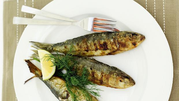 peixe-gordura-coracao-original.jpeg