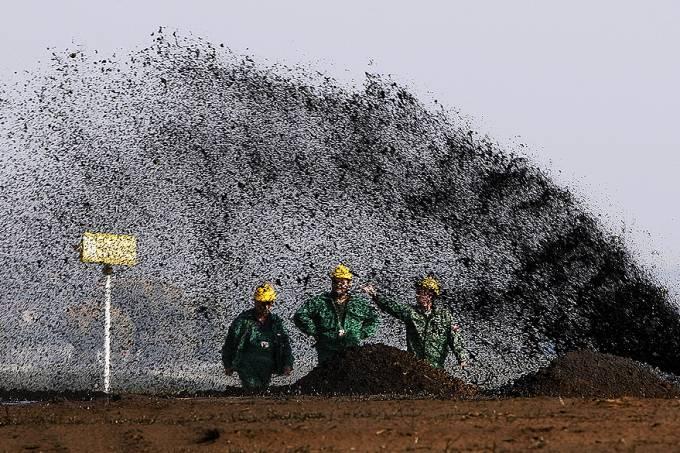 petroleo-construcao-budapeste-20120713-original.jpeg