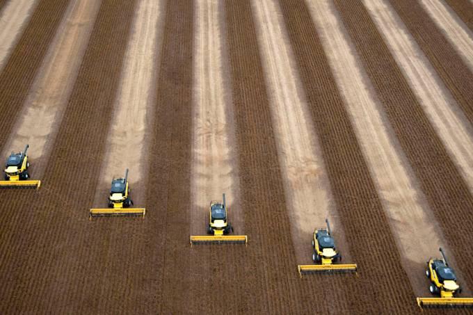 plantacao-soja-agricultura-bahia-20100104-original.jpeg