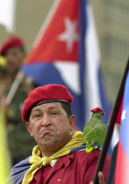 Com papagaio no ombro, Chávez participa de passeata em Caracas, Venezuela