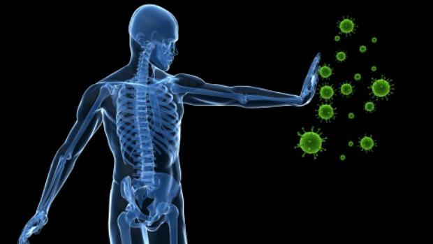 sistema-imunologico-2013-06-11-original.jpeg