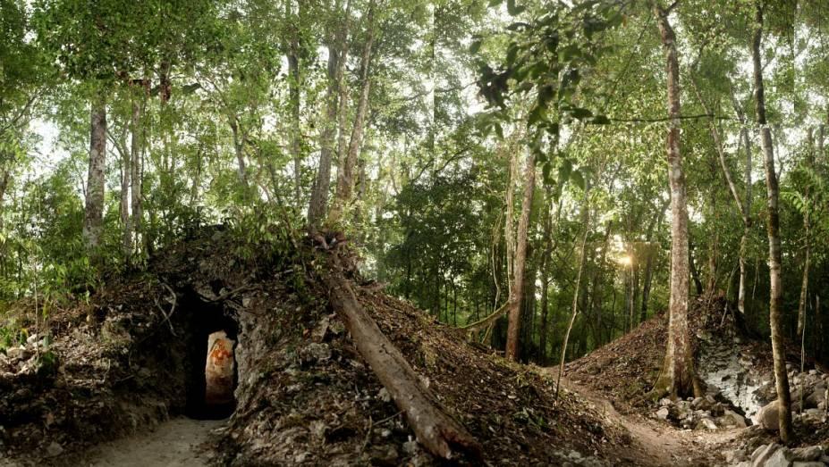 <p>Árvores crescem acima da casa maia recém-descoberta na Guatemala. O local onde a residência foi encontrada abrigava dezenas de milhares de pessoas durante o império Maia no século IX</p>