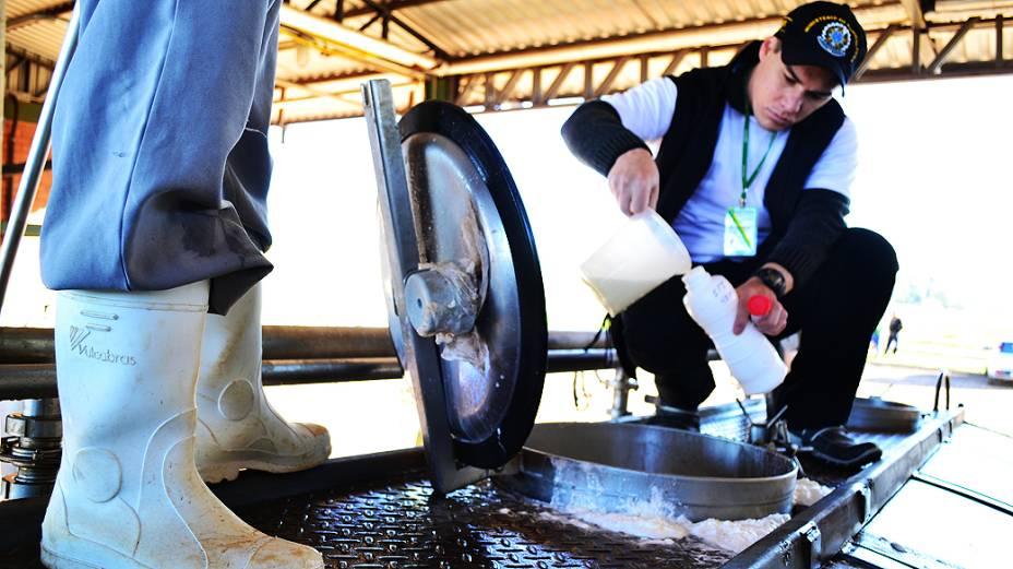 Ministério Público faz operação contra adulteração de leite no norte do Rio Grande do Sul<br>
